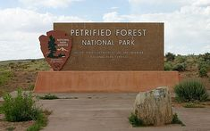 Petrified Forest National Park Projects