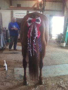 During the 4th of July I wanted to show off my horses beautiful tail.
