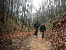 Hungary, Hiking, Humor, Couple Photos, Children, Nature, Ideas, Walks, Couple Shots