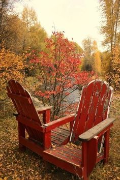 These free Adirondack chair plans will help you build a great looking chair in just a few hours, Build one yourself! Here are 18 adirondack chair diy Marie W, October Gallery, Happy Fall, Belle Photo, Fall Halloween, Autumn Leaves, Autumn Fall, Autumn Garden, Golden Leaves