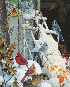 Winter Perch 1000 Piece Jigsaw Puzzle by SunsOut Sunsout Puzzles, Puzzle Art, Puzzle 1000, Vintage Birds, Colorful Birds, Wild Birds, Christmas Art, Bird Art, Puzzle Pieces