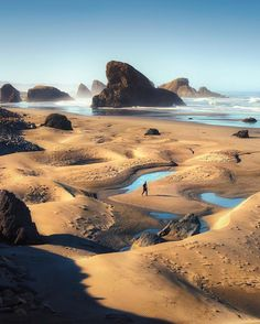 There's so much to see along the Oregon Coast, just hop on U.S. Highway 101 and cruise down the coast.
