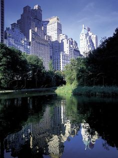 Walk through Central Park in New York and admire these reflections!
