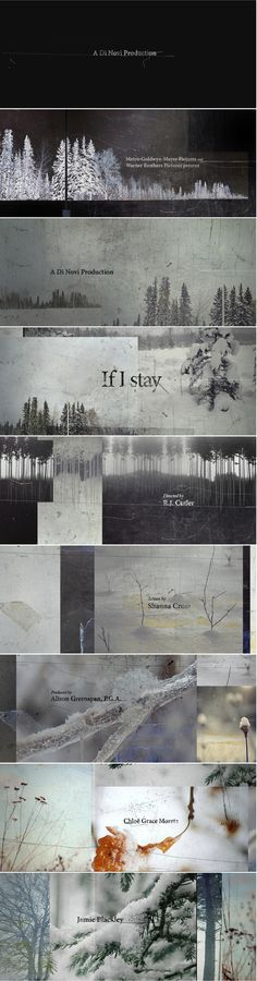 Title sequence design and motion graphics If I stay - Hyejung Bae Art Of The Title, Double Exposition, Typography Layout, Title Sequence, Branding, Design Graphique, Photoshop, Picture Design, Motion Design