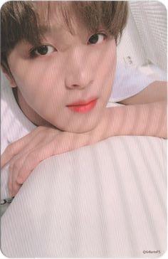 Nct/Wayv Smut and Fluff reactions/imagines Taeyong, Jaehyun, Nct 127, Winwin, Kpop, Rapper, Nct Life, Na Jaemin, Wattpad
