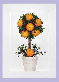 Resultado de imagem para Topiária de fruta