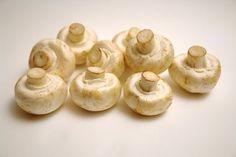 How to Grow Mushrooms in a Large Container or Bin