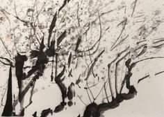 Lumi Mizutani | Prunier III - Black is beautiful | Indian ink on japanese paper | www.artistics.com... | #Artistics #ArtisticsGallery #IndianInk #Japanese #ContemporaryArt #Art #FineArt #Tree #BlackAndWhite Traditional Ink, Art En Ligne, Japanese Paper, Ink Painting, Ink Art, Black Is Beautiful, Contemporary Artists, Oeuvre D'art, Les Oeuvres