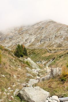 Vom Piffinger Köpfl zum Missensteiner Joch und Zurück - Eine Wanderung für Anfänger auf über 2000 Metern Höhe - ITB GLOBETROTTER - Eine Kulinarische Reise um die Welt für Fotografie- und Wander-Freunde