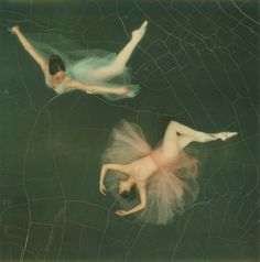 47 years ago today on April Edwin Land introduced his Polaroid camera. Pictured here is a Polaroid of 2 dancers from the Joffrey Ballet from the camera shot by the great Co Rentmeester. Co Rentmeester—The LIFE Picture Collection Joffrey Ballet, Camera Shots, Instant Camera, Life Pictures, Pretty Pictures, Picture Collection, Life Magazine, Ballet Dancers, The Life