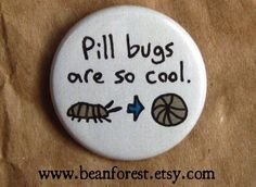 pill bugs are so cool  pinback button badge by beanforest on Etsy,      We call them Rolly Pollys!