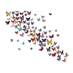 Release The Butterflies Mural ($98) ❤ liked on Polyvore featuring home, home decor, butterflies and butterfly home decor