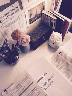 the-etranger: Organising study notes for exams