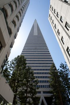 San Francisco ...Transamerica building ....my husband works for this company I luv touring this building its amazing to see sanfran from the top floor absolutely beautiful....ready to go back soon :)