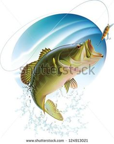 Largemouth bass is catching a bait and jumping in water spray. Layered vector illustration.