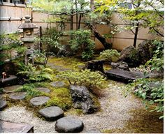 mini jardin japonais dans la cour