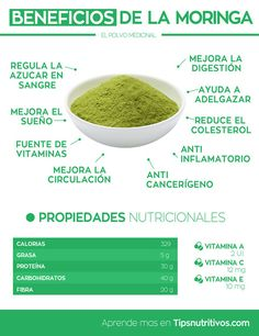 Excelentes Beneficios de consumir Moringa - descubre esta planta milagrosa.