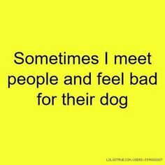 Sometimes I meet people and feel bad for their dog.