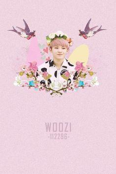 Resultado de imagem para Woozi tumblr wallpaper