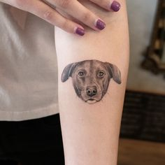 Dog tattoos are very popular. Dogs are one of the most loyal animals in the world and friends of human beings. If you have a pet dog at home, you can also try tattooing your pet dog on your body. Today we have collected 50 Cute Dog Tattoos For Women. Small Dog Tattoos, Pet Dogs, Pets, Animals Of The World, Tattoo You, Small Dogs, Tattoos For Women, Your Pet, Little Dogs