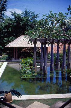 Dr. Lau Chee Chong House, Singapore / lcc03.jpg.  Made Wijaya, landscape designer