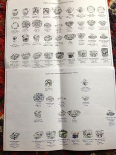 Emma Bridgewater Fig Brochure Page