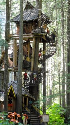 Enchanted Forest Tree House