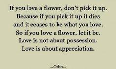 Love this Quote #osho #quotes @Sofia Nordgren Hamm