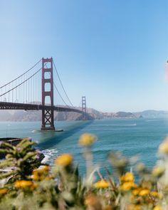 San Francisco, California. What to do in San Francisco. The Best Photo Spots in San Francisco. Best Places to Take Pictures in San Francisco. San Francisco Beach, San Francisco Travel Guide, Places In San Francisco, Kirby Cove, California Travel Guide, Place To Shoot, Us Travel, Luxury Travel, Best Cities