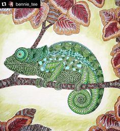 """Um arraso! #Repost @bennie_tee ・・・ Chameleon! From Millie Marotta's Animal Kingdom! Crosshatching with Staedtler Triplus Fineliners. Scratched…"""