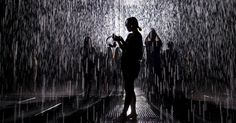 """20150901 - Instalação imita chuva em museu de Xangai, na China. O """"quarto de chuva"""" cria a sensação de um campo chuvoso, mesmo que o visitante permaneça seco. PICTURE: Aly Song/Reuters"""