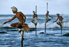 Bid now on Stilt Fishermen, Sri Lanka by Steve McCurry. View a wide Variety of artworks by Steve McCurry, now available for sale on artnet Auctions. Steve Mccurry, Magnum Photos, We Are The World, People Around The World, Around The Worlds, Afghan Girl, Portraits, Foto Art, National Geographic