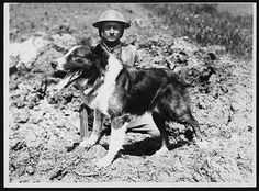1918-Messenger dog with its handler, in France, during World War I