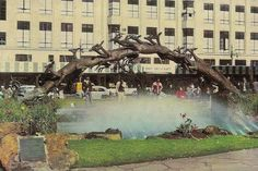 The Oppenheimer Fountains, Market Street - opposite the Belfast store - Johannesburg. The impala stampede statue now stands at 44 Main St. Johannesburg City, Third World Countries, Good Old Times, Historical Pictures, African History, Sculpture, Live, Old Photos, Nostalgia