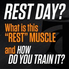 T-Nation.com #workout #fitness #bodybuilding