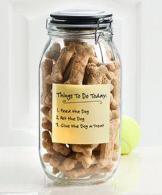 Loving this Webster Treats Jar on #zulily! #zulilyfinds