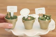 Stampin' Up! Artisan Blog Hop   Potted Place Settings