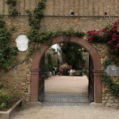 Eltville am Rhein | Komoot - Fahrrad- & Wander-App