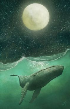 http://sosuperawesome.com/post/153811209625/the-whale-and-the-moon-david-leahey-on-inprnt
