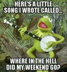 """Kermit is famous charter in cartoon movies.He is so funny character.These """"Monday Memes Kermit"""" are all about to Kermit. Just read out these """"Monday Memes Kermit"""" . Funny Sunday Memes, Funny Kermit Memes, Sunday Humor, Funny Jokes, Thursday Meme, Monday Morning Humor, Funny Friday, Sunday Night Meme, Happy Monday Funny"""
