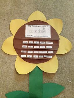Sunflower flap book
