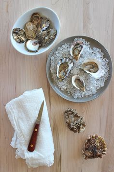 Dessertpin - 10 Ways to cook with oysters Fresh Oysters, Fresh Seafood, Oyster Recipes, Happy Foods, Food Presentation, Food Hacks, Seafood Recipes, Food Photography, Food Porn