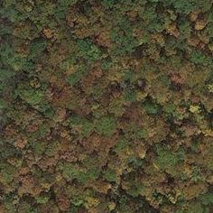 Wintergreen Hiking Trails and Walks - Google Maps
