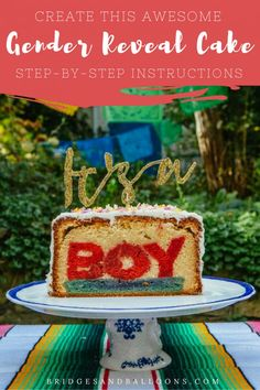 """In search of inspiration for unique gender reveal ideas? Re-create this awesome DIY """"It's a Boy or Girl"""" cake! This guide contains step-by-step instructions for baking your own """"It's a Boy or Girl"""" gender reveal cake. Pregnancy Gender Prediction, Pregnancy Gender Reveal, Baby Gender Reveal Party, Pregnancy Photos, Pregnancy Tattoo, Baby Reveal Cakes, Cheap Clean Eating, Diy Cake, Savoury Cake"""