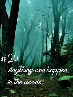 "#26: Lyric to ""Any Moment/ Moments in the Woods"" from Into the Woods"