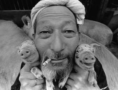 Pig and Papa. - Google Search