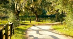 Miles of meandering paths make for a scenic bike ride