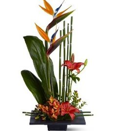 Exotic Tropical Flower Arrangements   Exotic and Tropical Flower Arrangements and Exotic Plants from ...