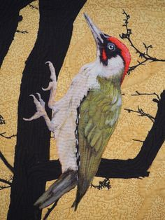 Edge of a Feather - Green Woodpecker detail by Linda Kemshall: Quilts