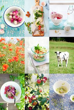 save the date: a food styling & photography retreat in Whistler, British Columbia | Flickr - Photo Sharing!